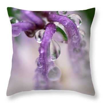 Throw Pillow featuring the photograph Violet Mist by Susan Capuano