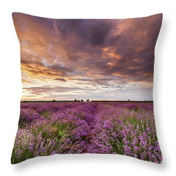 Violet Sunrise Throw Pillow by Evgeni Dinev