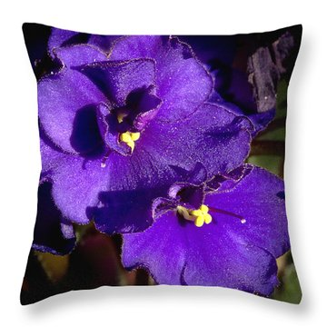 Throw Pillow featuring the photograph Violets by Phyllis Denton
