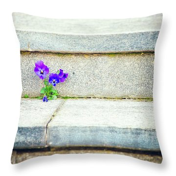 Throw Pillow featuring the photograph Violets    by Silvia Ganora