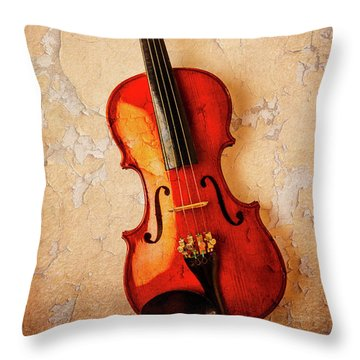 Violin Dreams Throw Pillow by Garry Gay