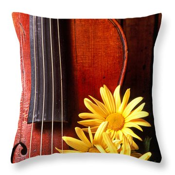 Violin With Daises  Throw Pillow by Garry Gay