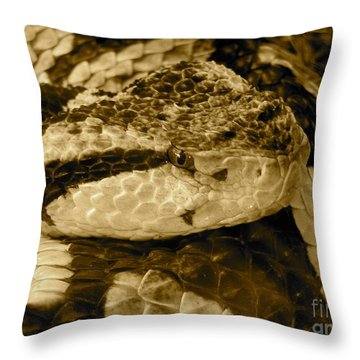 Viper's Glare Throw Pillow