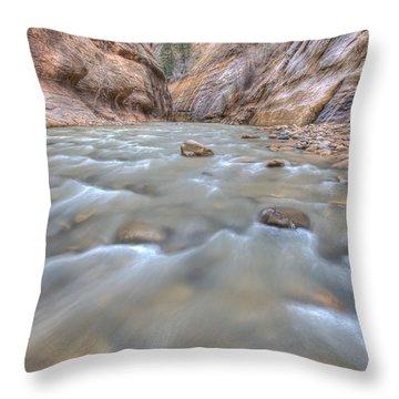 Throw Pillow featuring the photograph Virgin River 2 by Paul Schultz