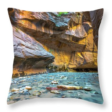 Virgin River Narrows Throw Pillow