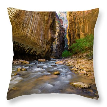 Virgin River - Zion National Park Throw Pillow