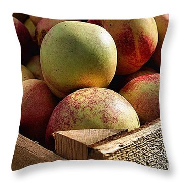 Throw Pillow featuring the photograph Virginia Apples  by John S