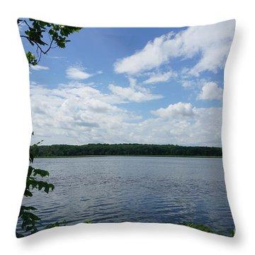 Virginia Lake Throw Pillow