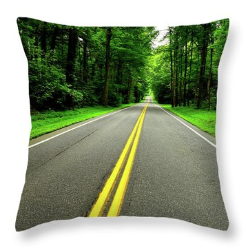 Virginia Road Throw Pillow