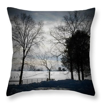 Virginia Snow Throw Pillow