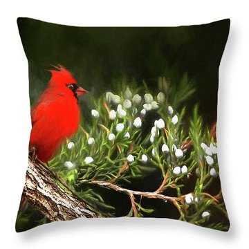 Throw Pillow featuring the photograph Virginia State Bird by Darren Fisher