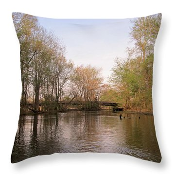 Throw Pillow featuring the photograph Virginia Waterways 1 by Digital Art Cafe