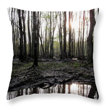 Throw Pillow featuring the photograph Virginia Waterways 2 by Digital Art Cafe