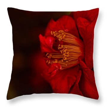 Virtuoso  Throw Pillow