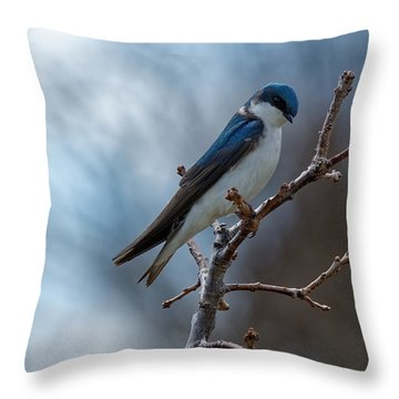 Vision In Blue Throw Pillow