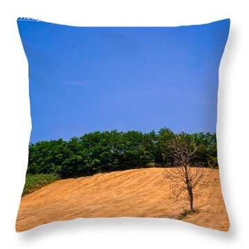 Visions Throw Pillow by Cesare Bargiggia