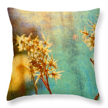 Visit Throw Pillow