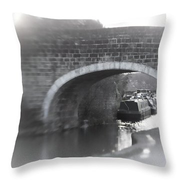 Visit To An Old Friend Throw Pillow