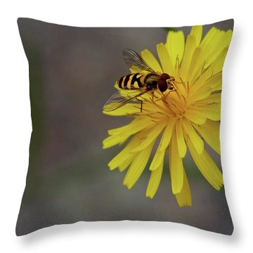 Throw Pillow featuring the photograph Visitor by Scott Holmes