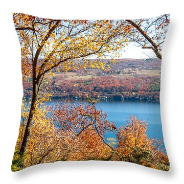 Throw Pillow featuring the photograph Vista From Garrett Chapel by William Norton