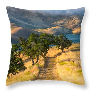 Vista Grande Trail At Sunrise Throw Pillow