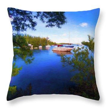 Vista Series Grpr0382 Throw Pillow