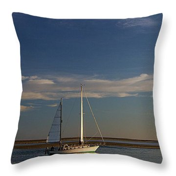 Visual Escape Throw Pillow