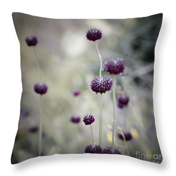 Visualization II Throw Pillow