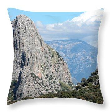 Viva Andalucia Throw Pillow