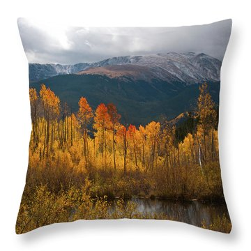 Vivid Autumn Aspen And Mountain Landscape Throw Pillow