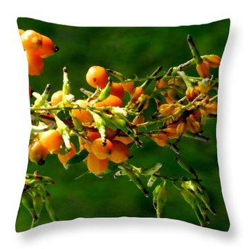 Vivid Berries Throw Pillow