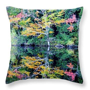 Vivid Fall Reflection Throw Pillow