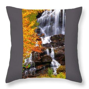 Vivid Falls Throw Pillow