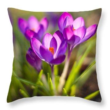 Vivid Petals Throw Pillow by Mike Reid