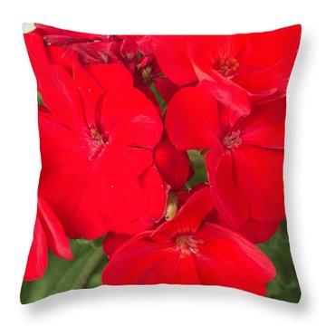 Vivid Red Throw Pillow by Nance Larson