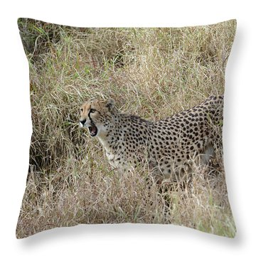 Throw Pillow featuring the photograph Vocalizing by Fraida Gutovich