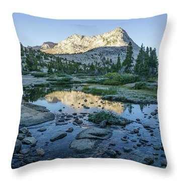 Vogelsang Throw Pillow