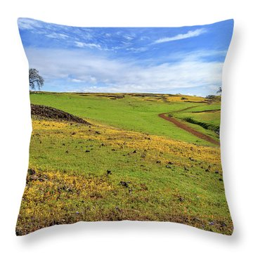 Throw Pillow featuring the photograph Volcanic Spring by James Eddy