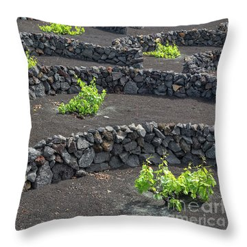 Volcanic Vineyards Throw Pillow by Delphimages Photo Creations
