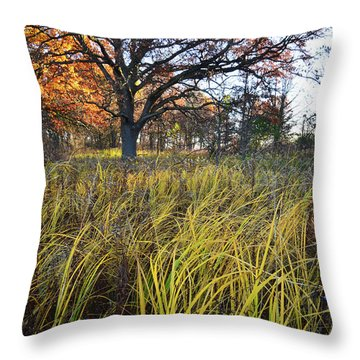 Throw Pillow featuring the photograph Volo Bog Fall Morning by Ray Mathis