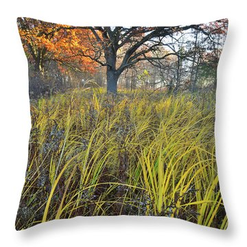 Throw Pillow featuring the photograph Volo Bog Natural Area by Ray Mathis