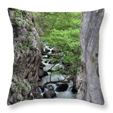 Vouraikos Gorge Throw Pillow