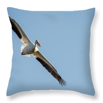 Voyage Throw Pillow
