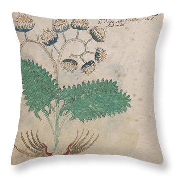 Voynich Flora 14 Throw Pillow