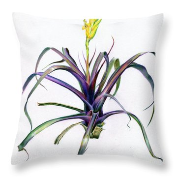 Vriesea Bleheri Throw Pillow