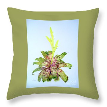 Vriesea Ospinae Var. Gruberi Throw Pillow