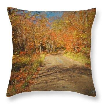 Vt.rte. Fifty Eight Hazen  Notch Throw Pillow