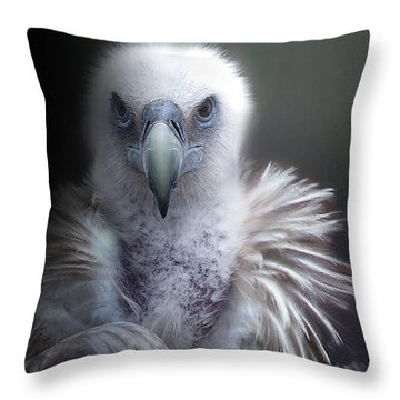 Throw Pillow featuring the photograph Vulture 2 by Christine Sponchia