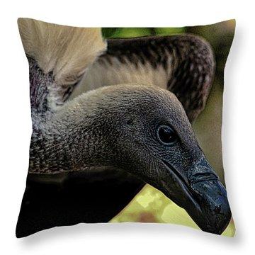 Vulture Throw Pillow by Martin Newman