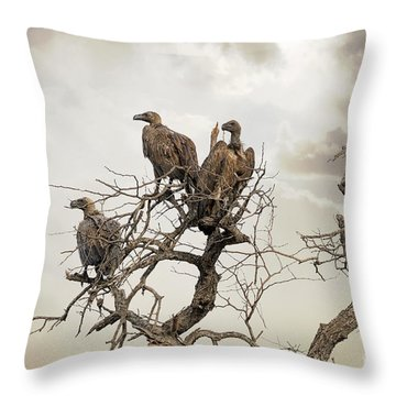 Vultures In A Dead Tree.  Throw Pillow by Jane Rix